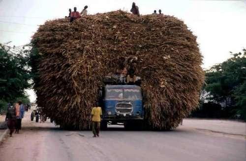 Божевільні вантажоперевезення. Картинки про транспорт