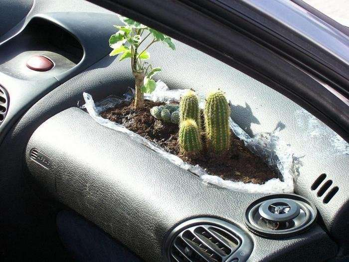 Прикольні картинки про авто. Автомобільний гумор